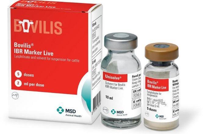 Bovilis IBR Marker Live