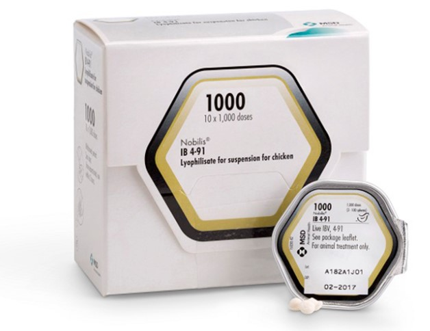 Nobilis IB 4-91 pack shot