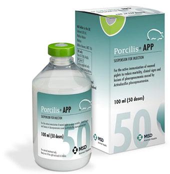 Porcilis App pack shot