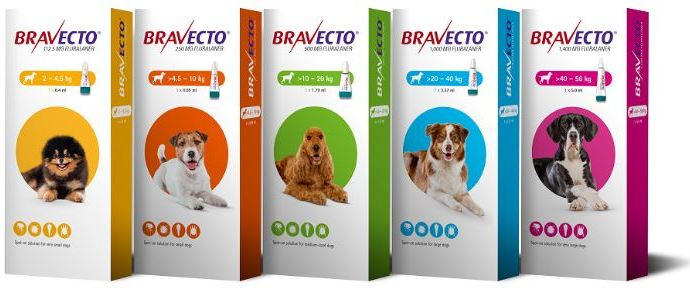 Bravecto spot on for dogs