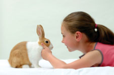 This image has an empty alt attribute; its file name is rabbit-image_001_tcm102-136687.jpg