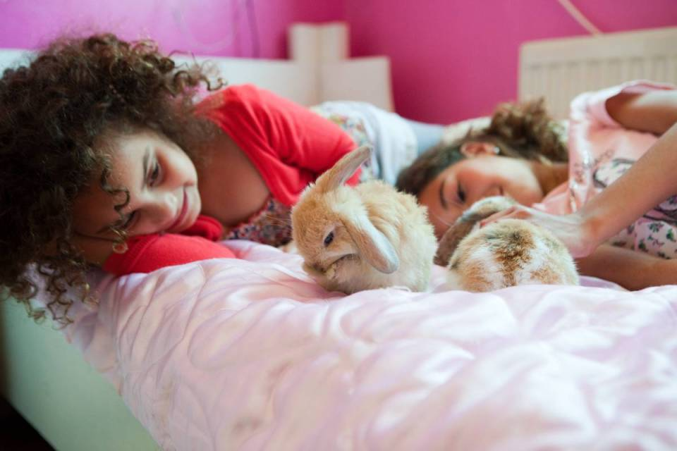 Girls on bed with pet rabbits
